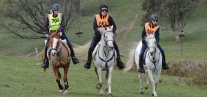 Tom Quilty Endurance Ride @ Collie Race Club | Collie | Western Australia | Australia